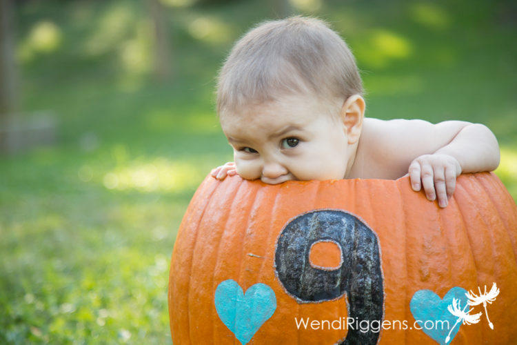 pumpkins-and-babies-in-the-park-3