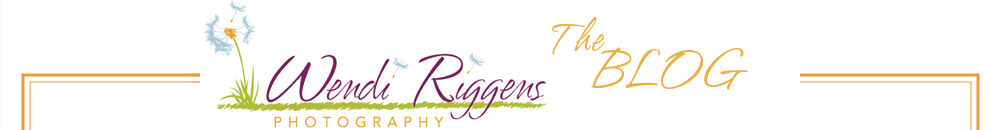 Wendi Riggens Photography LLC Blog – Burlington Iowa logo