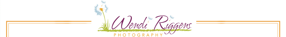 Wendi Riggens Photography – Burlington Iowa Professional Wedding and Portrait Photographer logo